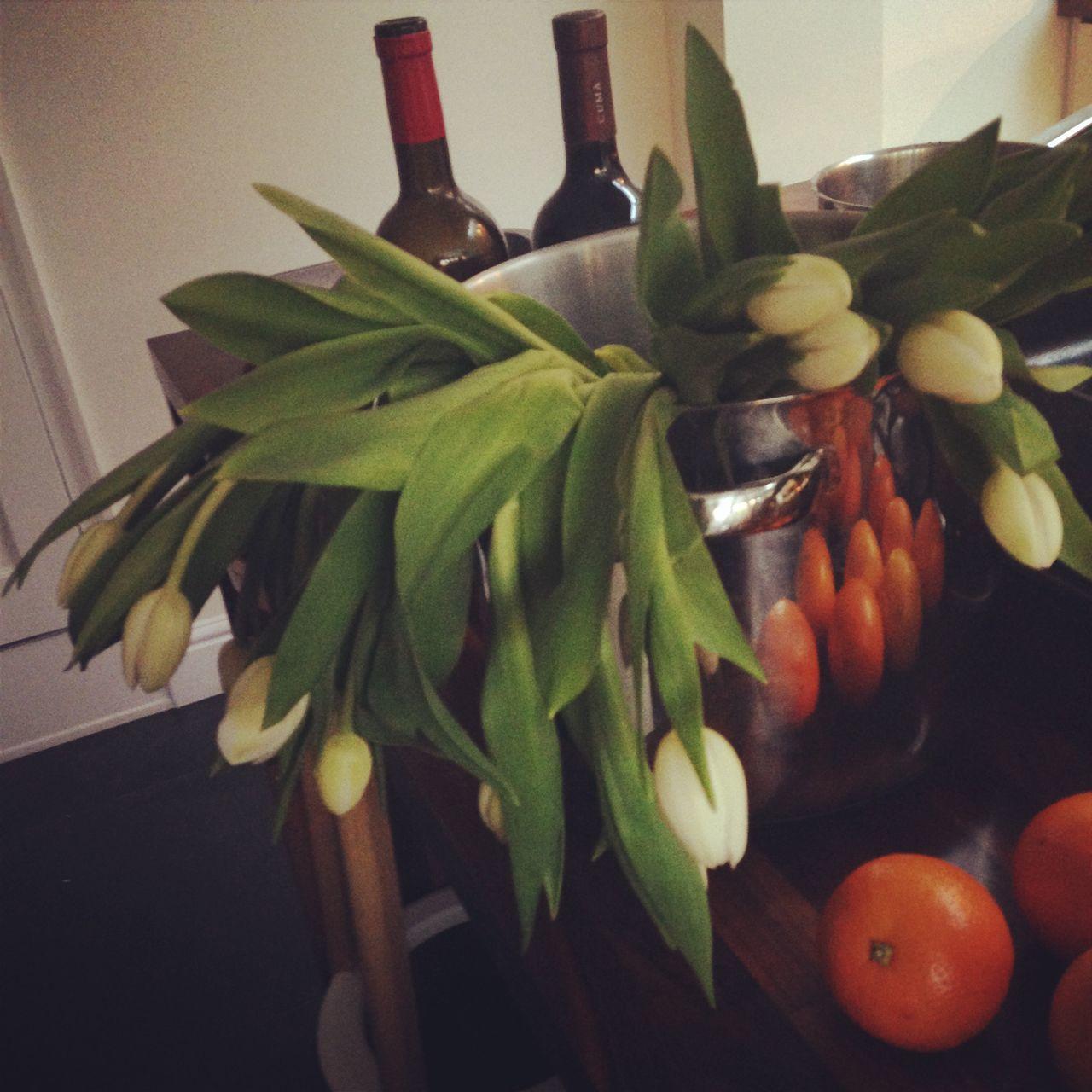 leaf, food and drink, indoors, bottle, freshness, no people, healthy eating, food, green color, close-up, fruit, flower, day
