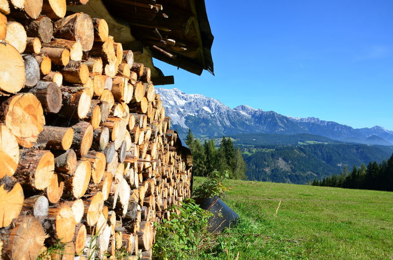 Wonderful styria. Beauty In Nature Clear Sky Day Grass Landscape Large Group Of Objects Log Mountain Mountain Range Nature No People Outdoors Scenics Sky Stack Timber Tree Woodpile