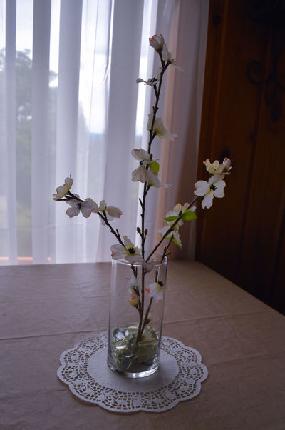 Beauty In Nature Close-up Curtain Day Decoration Flower Flower Arrangement Flower Head Flowering Plant Fragility Freshness Growth Home Interior Indoors  Nature No People Plant Table Vase Vulnerability  Window