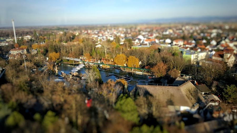 tilt shift EyeEm Best Shots Walking Around Nature Outdoors Nature_collection Tadaa Community Tilt Shift Check This Out Trees Depth Of Field