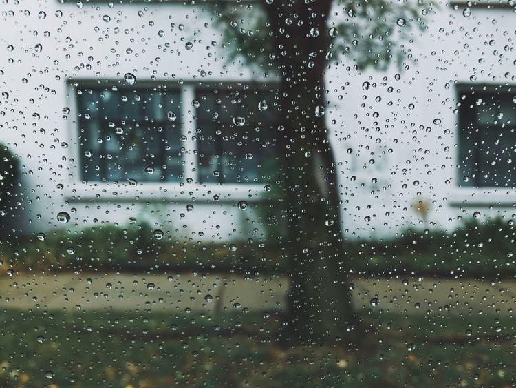 VSCO Rainy Day