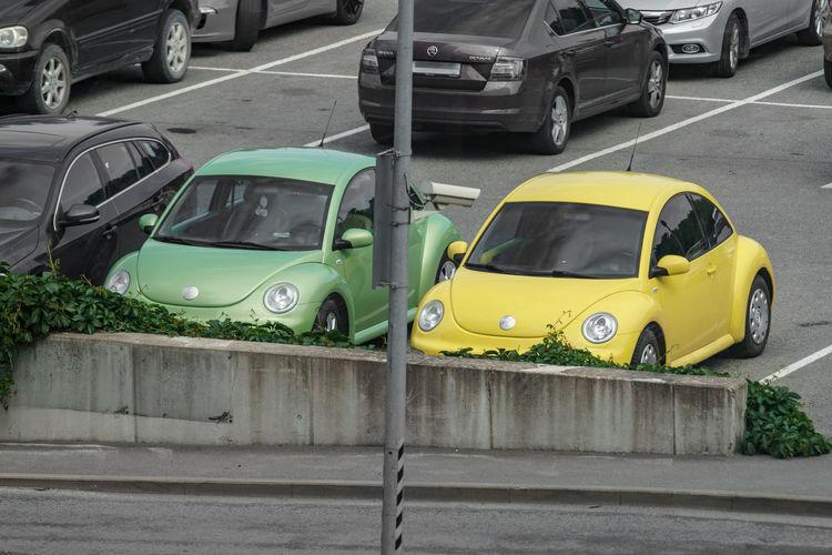 City bugs!