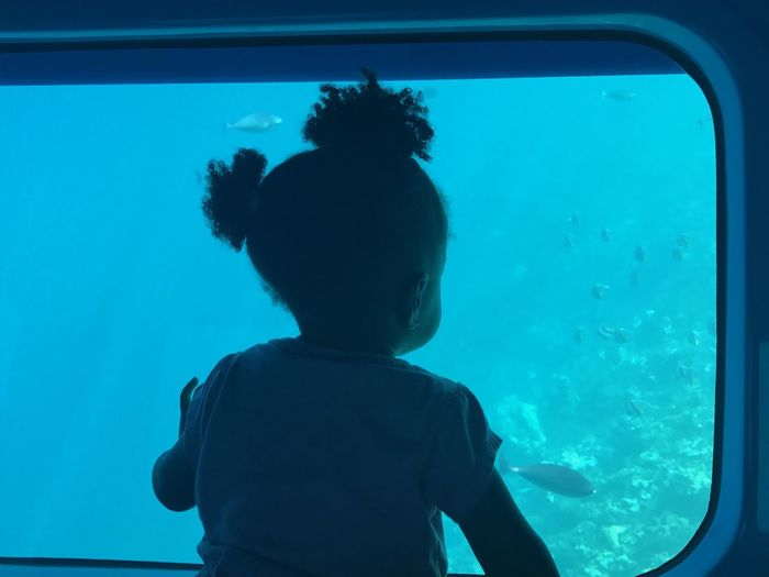 Rear view of girl looking at fish in aquarium