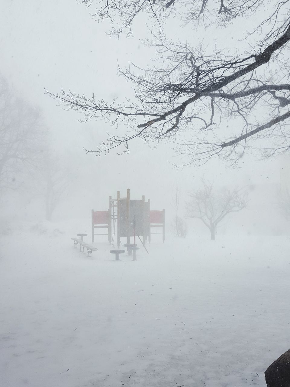 SNOW COVERED LANDSCAPE DURING FOGGY WEATHER