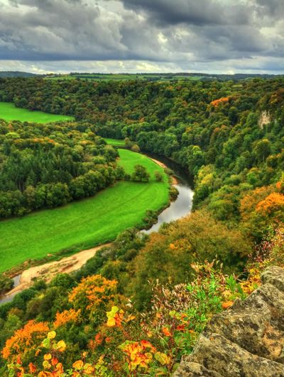 Beauty In Nature Cloud - Sky Countryside Day Green Green Color High Angle View Idyllic Landscape Lush Foliage Nature Non-urban Scene Outdoors Remote River River Wye Scenics Sky Solitude Symonds Yat Tranquil Scene Tranquility Tree Valley Water