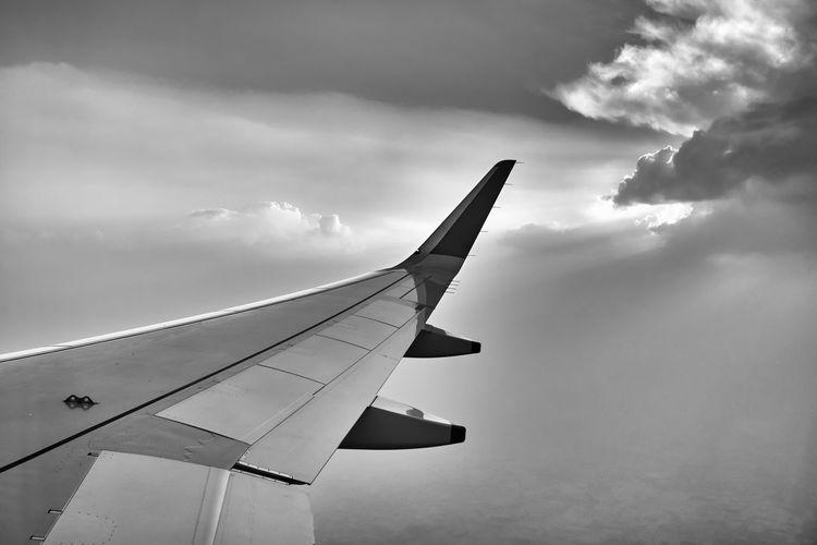 Wings Cloud -