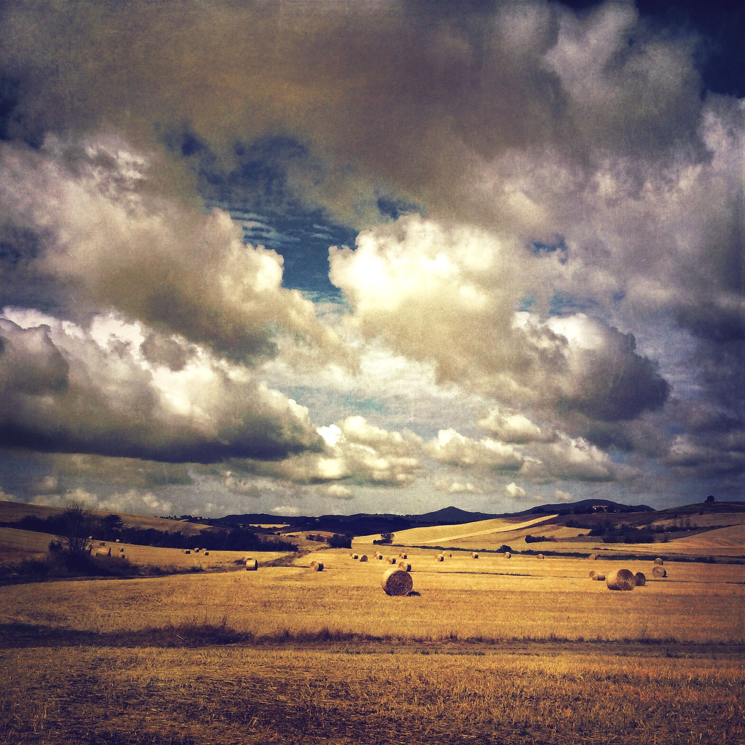 sky, cloud - sky, cloudy, tranquil scene, landscape, tranquility, scenics, beauty in nature, field, nature, cloud, overcast, weather, horizon over land, rural scene, agriculture, idyllic, storm cloud, remote, outdoors