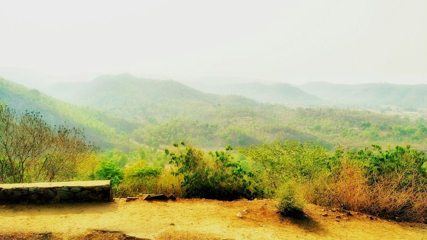 An awesome day Landscape Mountain Scenics Fog Outdoors Nature Forest No People Freshness Sky Day Beauty In Nature Live For The Story