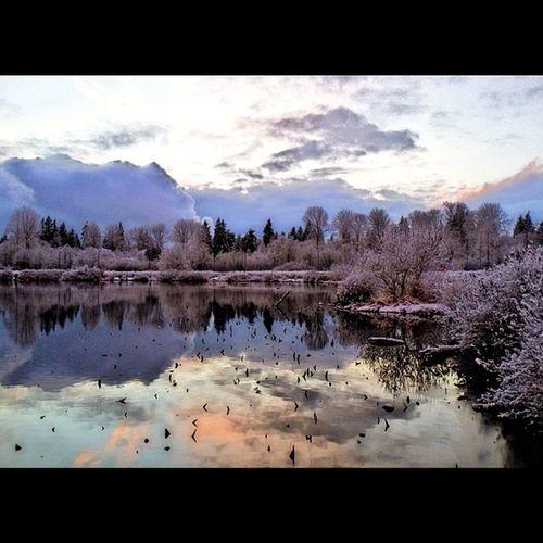 Snowy skyline at Larsen Lake. Snow LarsenLake Bellevue Lake winter sunset