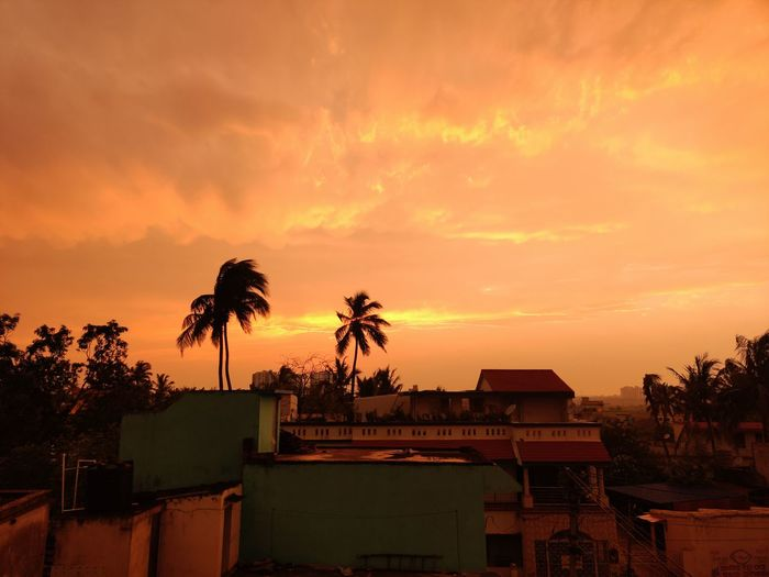 Silhouette palm trees by houses against romantic sky at sunset