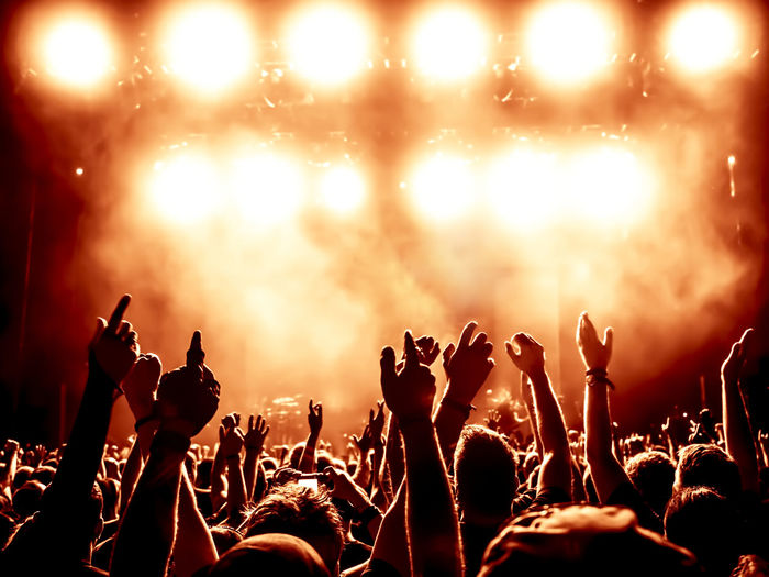 Crowd during music concert against at night