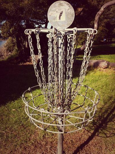 Disk Golf Hole