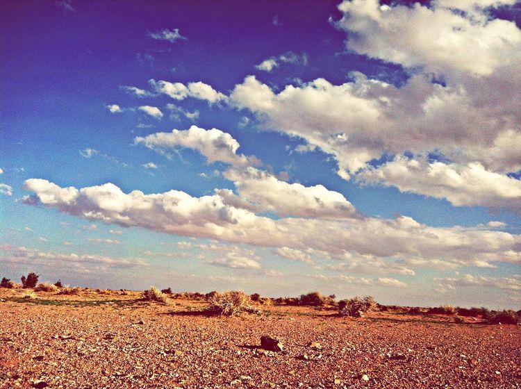 المصورين العرب حايل