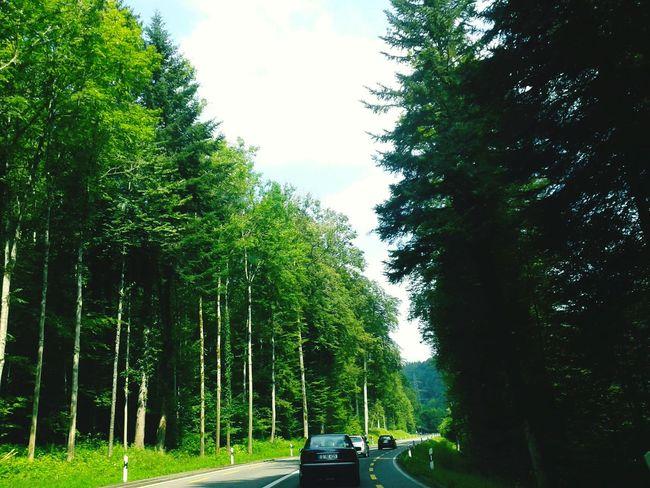 When on travel for Switzerland Ontravel Switzerland Lastsummer Family