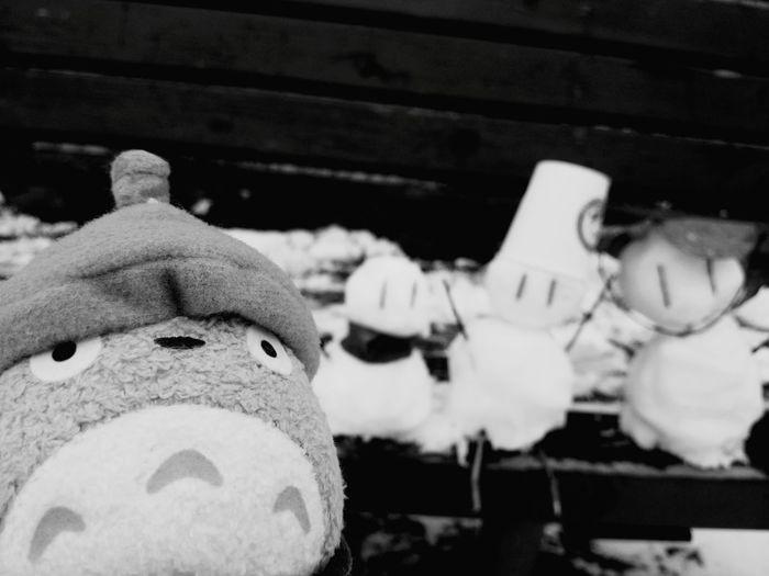 totoros snowday Black&white Adventure Totoro My Neighbor Totoro Black & White Blackandwhite Winter Blackandwhitephotography Blackandwhite Photography Ghibli
