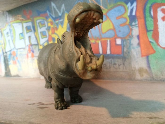 Art Art And Craft Graffiti Creativity Mammal Streetphotography Hippo