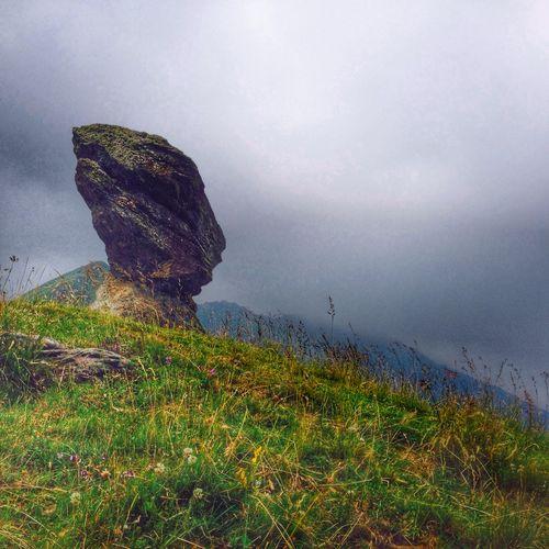 Roccia del gallo, Menulla Rock Mountain Alps Alpine Landscape Beauty In Nature Piedmont Serpent Head Ancient Geology