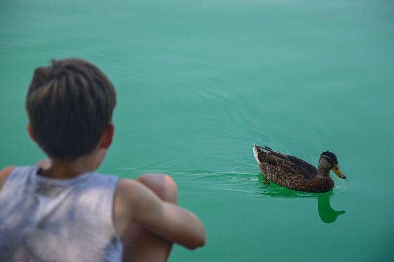 Young woman swimming in lake