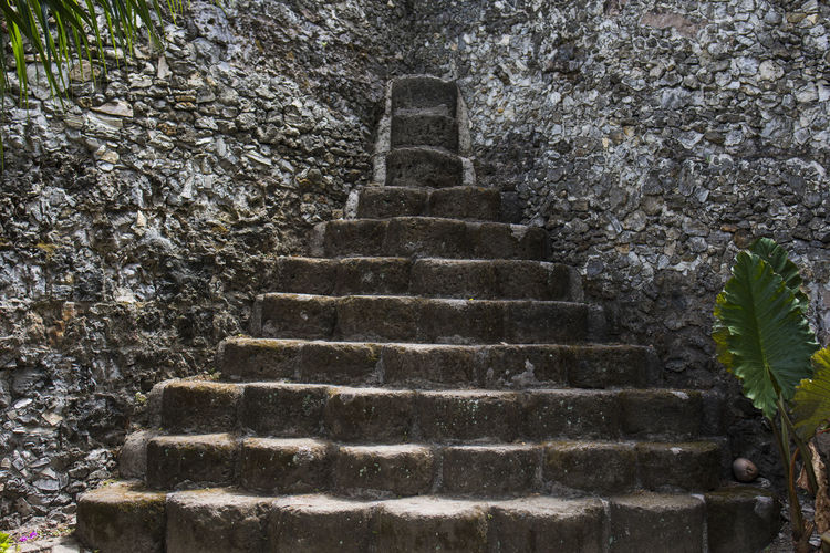 Castle Stone Stairs Castel Stone Fort San Pedro Cebu Cebu Philippines Philippines Philippinen Tree Steps And Staircases Steps Staircase Architecture Built Structure Stairway Stairs Pyramid This Is Strength