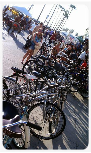Beach & Bicycles