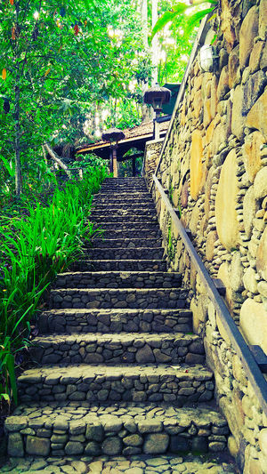 EyeEmNewHere Rural Lifestyle Stone Steps Summer In The City Architecture Building Exterior Built Structure Day Escape From The City Green Color Growth Janda Baik Low Angle View No People Outdoors Pebble Wall Plant Railing Rural Life Staircase Steps And Staircases Stone Wall Village Life Weekend Getaway