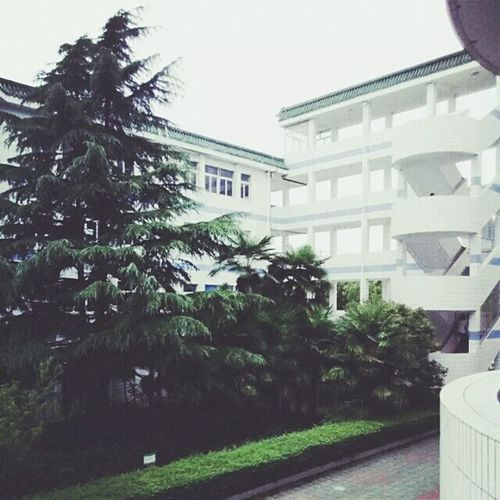 MySchool Holiday Beautiful Old Buildings Trees Garden Lovely Place First Eyeem Photo