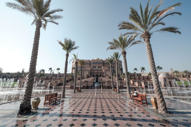 Architecture History Outdoors Palace Hotel Palm Tree The Past Tiled Floor Tourism Travel Travel Destinations Tree Tropical Climate