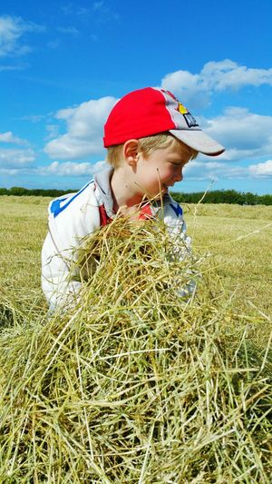 Hay is ready to bale! Hay Son