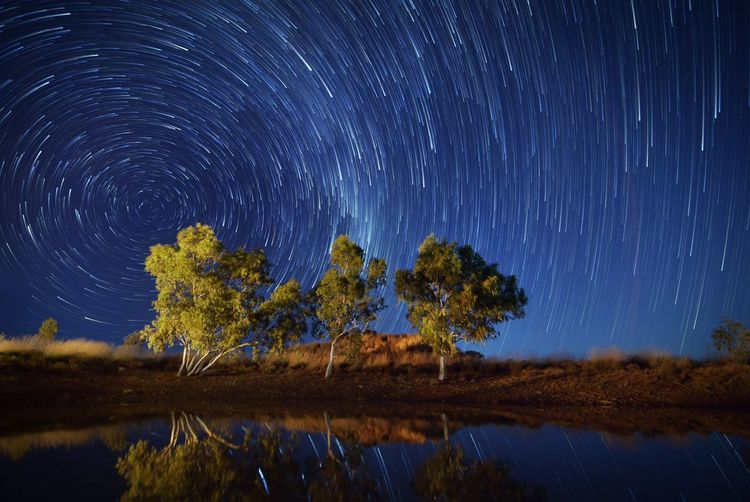 Trees on lake against star field at night