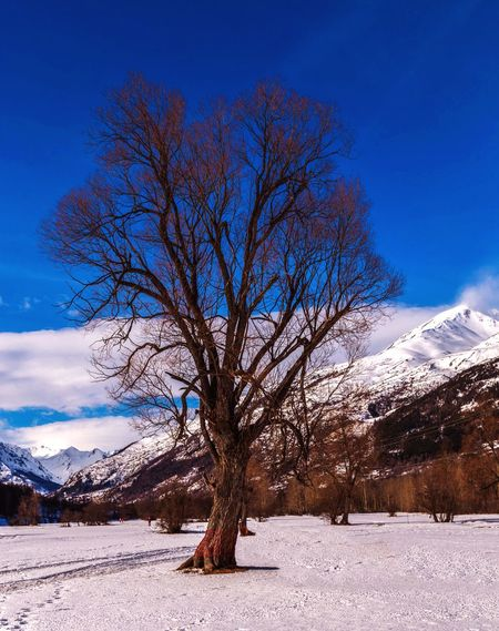 EyeEmBestPics From My Point Of View EyeEm Best Shots EyeEm Nature Lover EyeEm Selects Cold Temperature Snow Sky Winter Tranquility Serre Chevalier  Cold