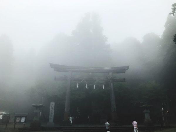 Fog Architecture Built Structure Nature Building Exterior Travel Destinations City