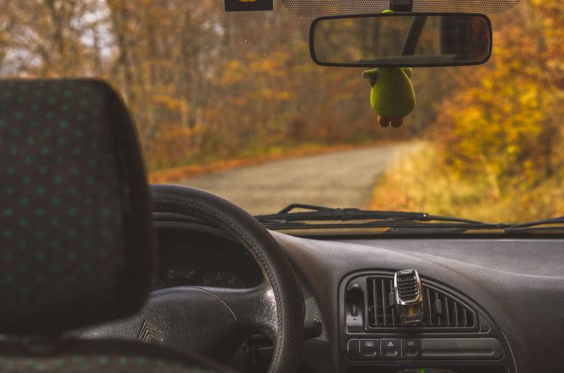 Autumn Car Car