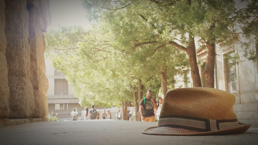 A lonely hat sits abandoned on a bench in the afternoon sunlight at the majestic Wits Central Block. Wits Johannesburg Braamfontein  First Eyeem Photo