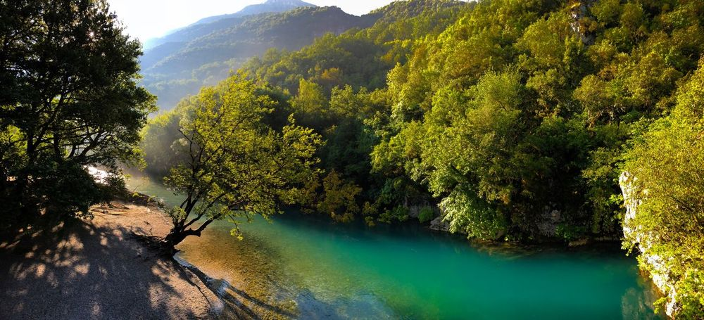 Voidomatis River Green Water Aerial Shot Greece Zagoroxoria,greece River Tree Plant Water Beauty In Nature Green Color Tranquility Sunlight Nature Day Scenics - Nature No People Land Tranquil Scene Idyllic Forest Outdoors The Great Outdoors - 2018 EyeEm Awards