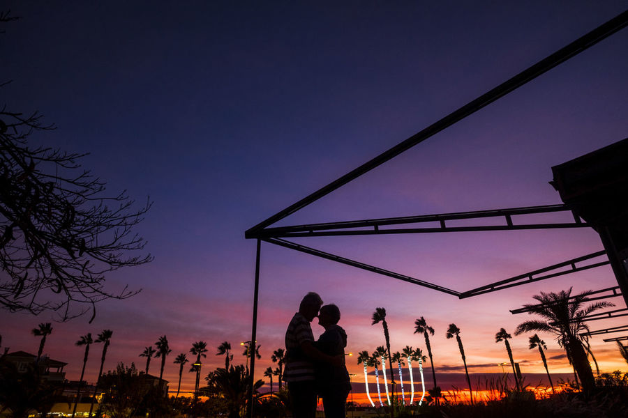 romantic couple in love outdoor in sunset between palm trees Romantic Beauty In Nature Couple In Love Leisure Activity Lifestyles Nature Night Outdoors Palm Trees People Real People Silhouette Sky Standing Suggestive Place Sunset Tenderness Tree Two People