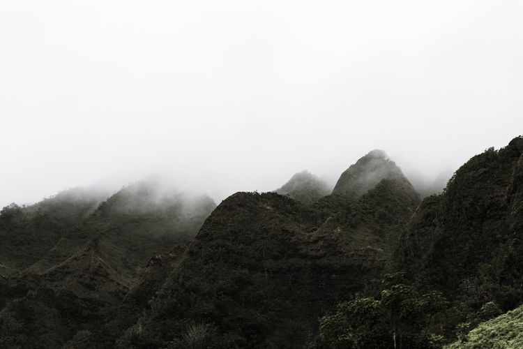 Mountain Nature Fog Beauty In Nature Tranquility Copy Space Tranquil Scene Foggy Landscape Mist Tree Scenics