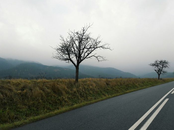 Road Landscape Tree Fog Bare Tree Plant Nature Meadow Outdoors No People Beauty In Nature Day Sky Mountains Slovakia Slovakia Nature Peace Peaceful Relaxing