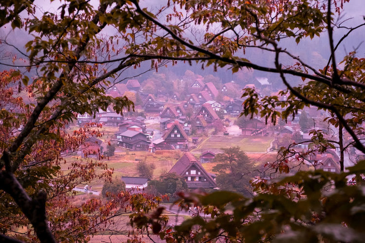Autumn in Shirakawago, Japan. Ancient Autumn Close-up Clothing Cloud - Sky Color Colorful Colors Gate Japan Kimono Nature Outdoors Pray Shirakawa-go Shirakawago Skirt Skirts Takayama Tradition Travel Travel Destinations Tree Vacations