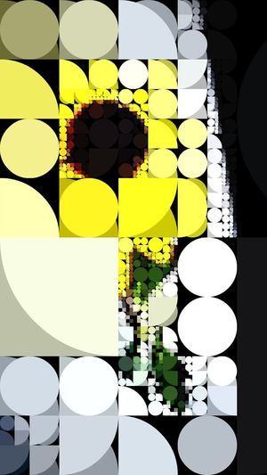 Pixl Flowers Black Eyed Susie's
