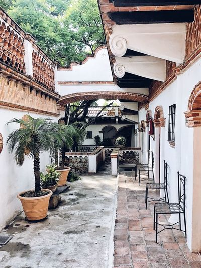 Hotels with History. Travel Destinations Streetphotography Mexico Architecture Luxury Mexican Architecture History Hotel Luxury Hotel Historical Building Historic Building Interior Design Town