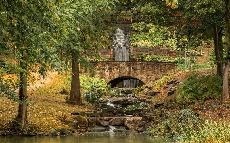Herbststimmung Spaziergang Durch Den Herbst. Wasserfall *___* Autumn Forest Grün Nature Pattern Plant Tree Water Waterfall