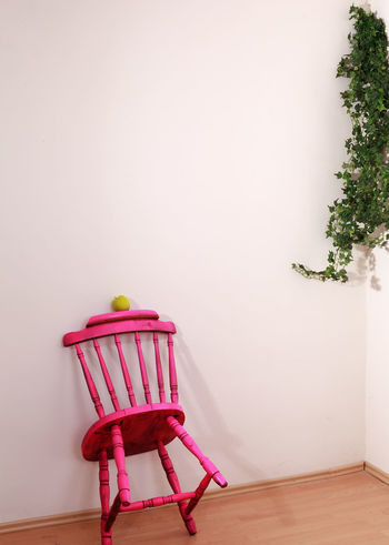 Pink wooden chair leaning against a wall and on the back is a green apple, the side of which an ivy hanging down Apple Creativity Home Old-fashioned Pink Rear View Retro Wall Wood Abstract Art Chair Day Decoration Fruit Furniture Hardwood Floor Home Interior Indoors  Interior Ivy No People Older  Pink Color Revival