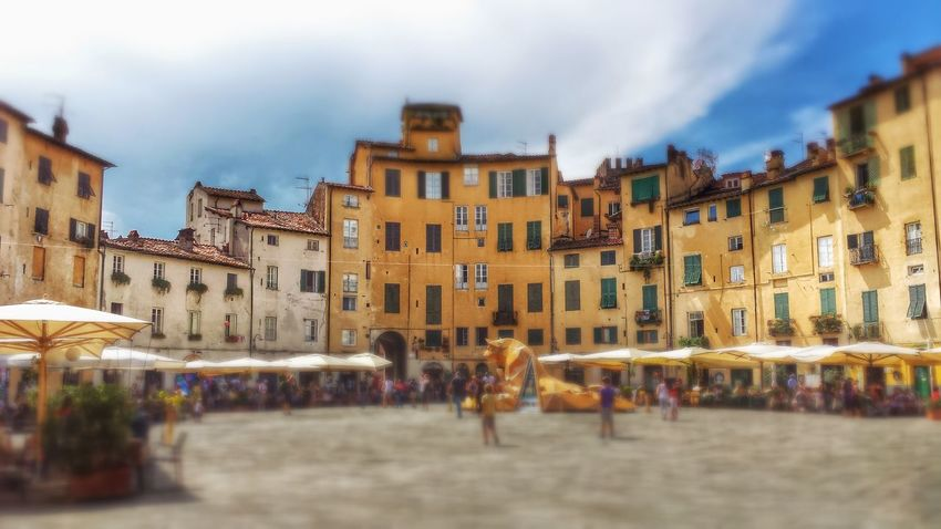 Urban Geometry Square Public Square The World Around Me Piazza Anfiteatro, Lucca, Tuscany, Italy