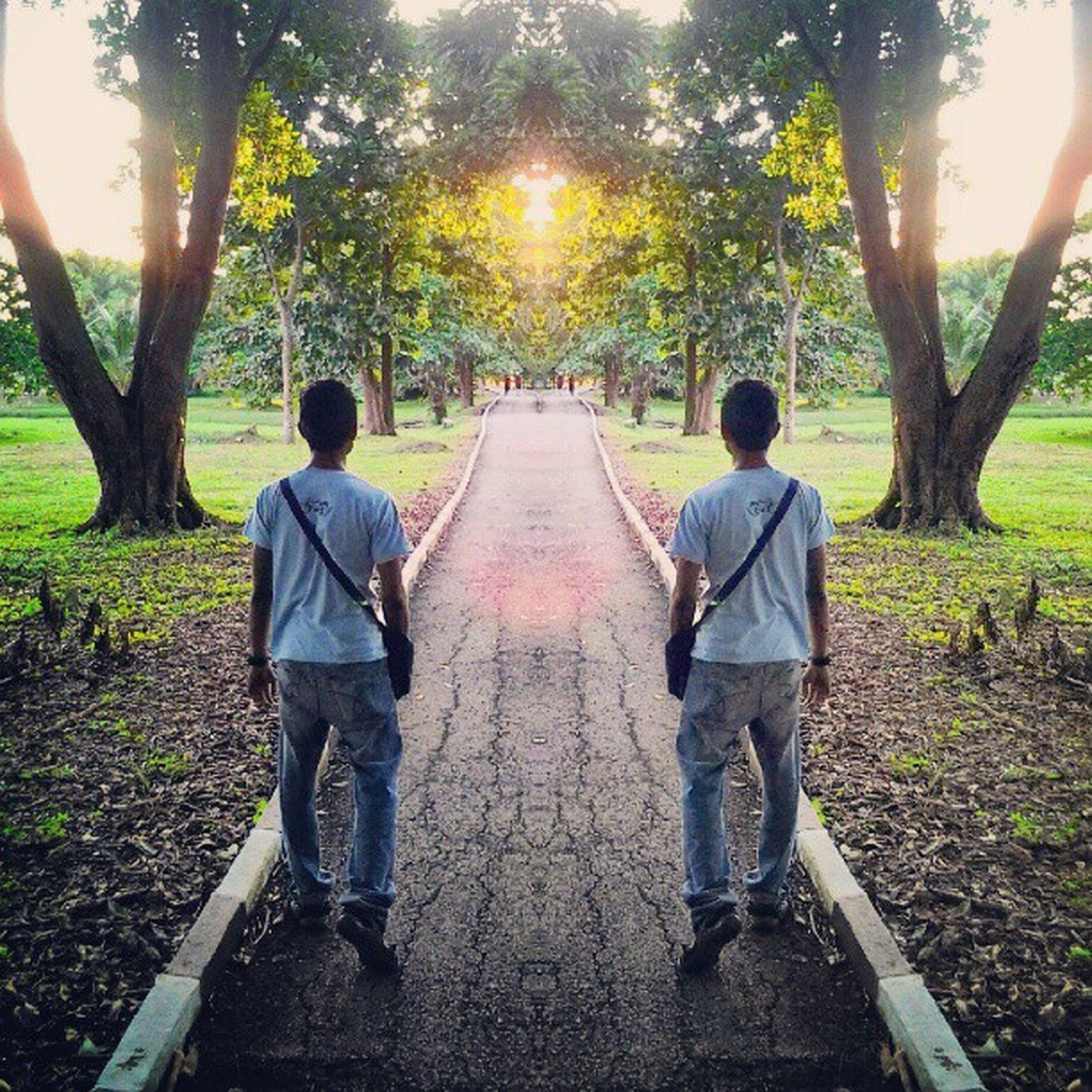 rear view, tree, full length, lifestyles, leisure activity, the way forward, casual clothing, sunlight, togetherness, walking, boys, men, bonding, childhood, standing, sun, footpath
