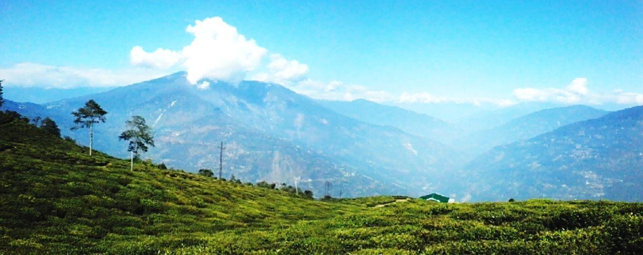 panorama Mountain Range Sunlight Landscape Nature Cloud - Sky Day Tea Crop Outdoors