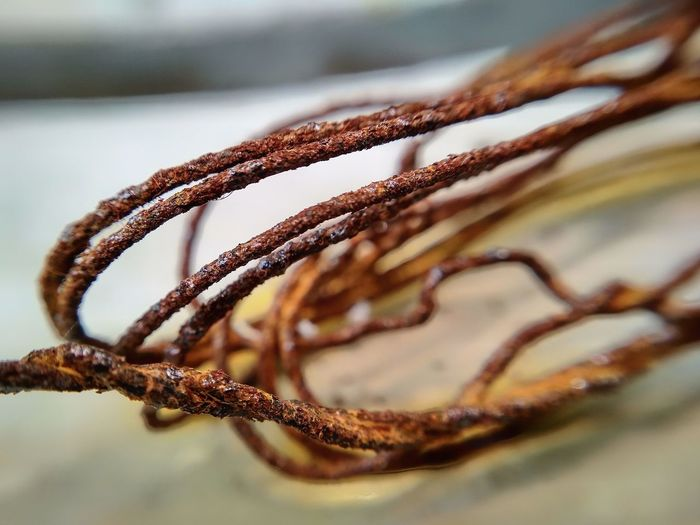 Wire Rusty Rusty Metal Old Metal Wicked Close-up No People Full Frame Day Macro Outdoors EyeEmNewHere EyeEm Ready   AI Now