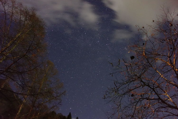 冬の星空。暗い流星が写りました。 Star 星空
