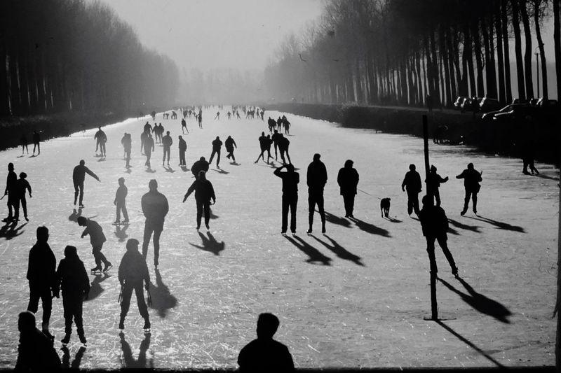 People enjoying ice-skating
