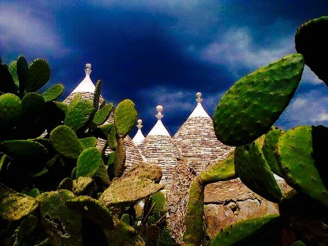 Puglia Trulli prickly pear Contrast Light And Dark sky Past Time
