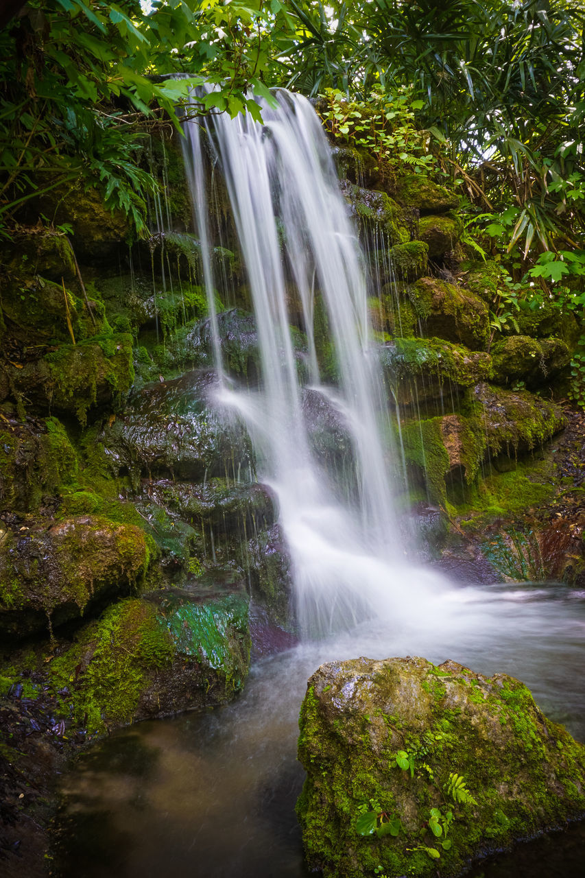 motion, waterfall, long exposure, scenics - nature, plant, water, rock, beauty in nature, rock - object, forest, land, blurred motion, solid, flowing water, tree, nature, no people, green color, moss, flowing, outdoors, rainforest, power in nature, falling water